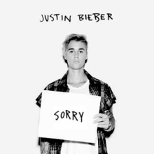 220px-justin_bieber_-_sorry_28official_single_cover29